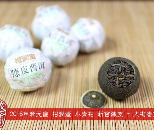 正宗新會陳皮普洱 小青柑 潤元昌 柑潤堂